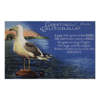 CaliforniaGreetings From, Seagull Poem Print