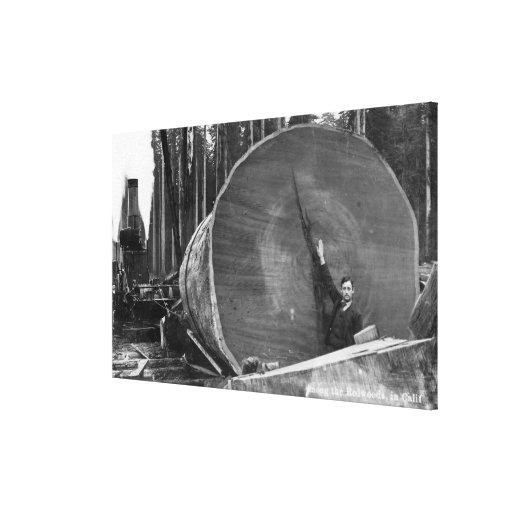 CaliforniaMan que presenta por el registro cortado Impresión En Tela