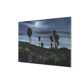 CaliforniaMoonlit View at Twenty-Nine Palms Canvas Print
