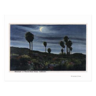 CaliforniaMoonlit View at Twenty-Nine Palms Postcards