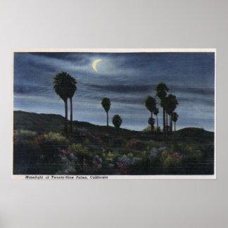 CaliforniaMoonlit View at Twenty-Nine Palms Poster