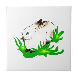 Californian blue eyed rabbit in green grass.png ceramic tile