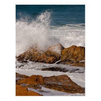 Californian Seascape Postcard