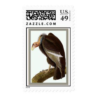 Californian Vulture Stamp