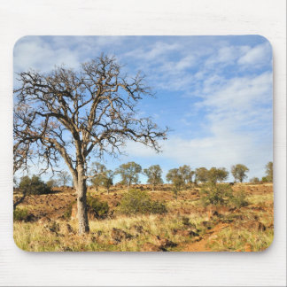 California's Chaparral Country Mouse Pad