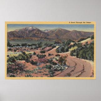 CaliforniaScenic Desert View Posters