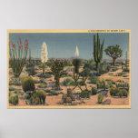 CaliforniaVarieties de los cactus del desierto Posters