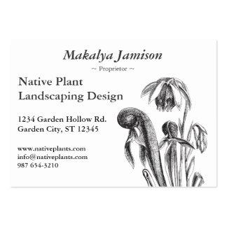Californica del Darlingtonia, planta carnívora Plantilla De Tarjeta De Negocio