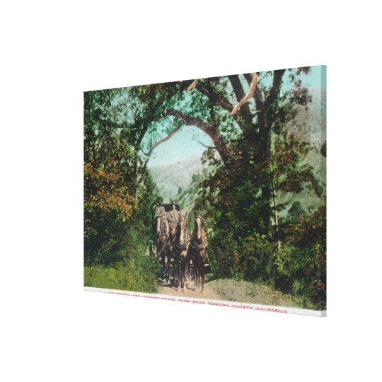 Calistoga and Geyser Stagecoach on Foss Road Canvas Print