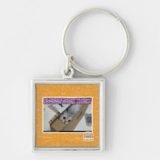 Call 1-800-LOLCATS Keychains