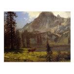 Call of the Wild - Albert Bierstadt Post Cards