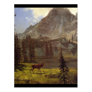 Call of the Wild - Albert Bierstadt Postcard