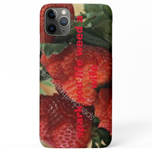 call phone iPhone 11 pro max case