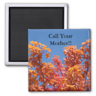 Call Your Mother! magnets Blue Sky Fall Trees