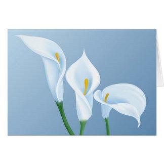 Calla flowers greeting card