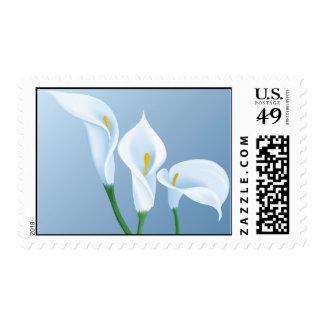 Calla flowers postage