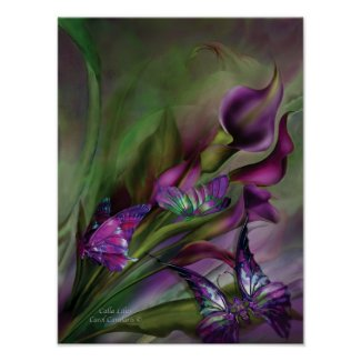 Calla Lilies Art Poster/Print print