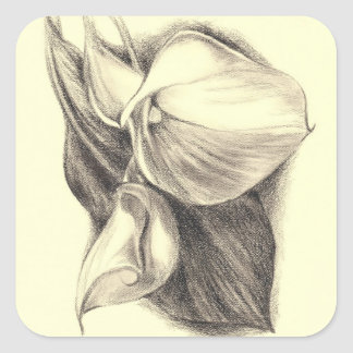 Calla Lilies Drawing Square Stickers