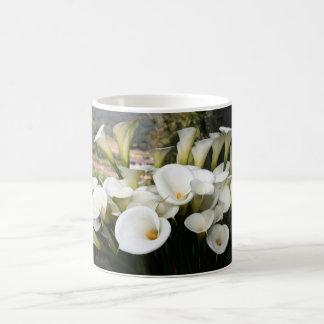 Calla Lilies growing at  Lily Plantation, Taiwan Classic White Coffee Mug