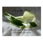 Calla Lilies on White Lace Save the Date Postcard