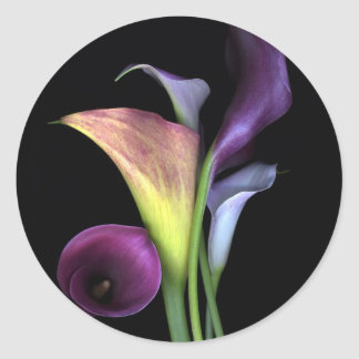 Calla Lilies Stickers