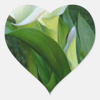 Calla Lillies (white) Heart Sticker