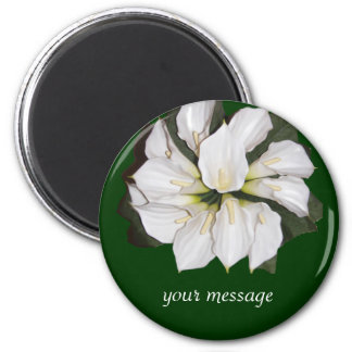 Calla lilly blooms magnet