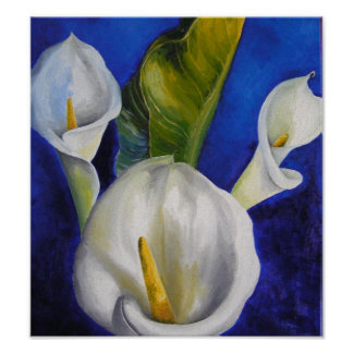 calla lilly posters