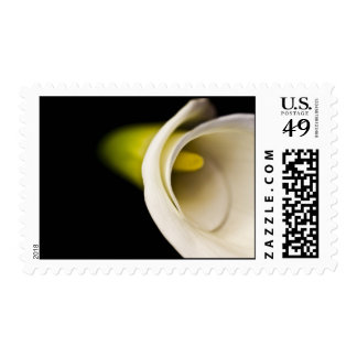 Calla Lilly Series Postage