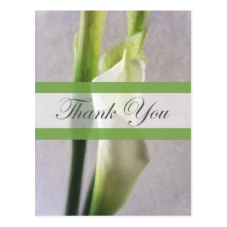 Calla Lily 1 Thank You Postcard