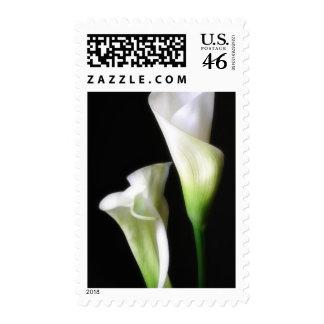 Calla Lily 2 Stamp
