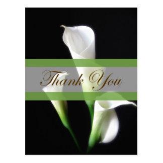 Calla Lily 3 Thank You Postcard
