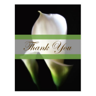 Calla Lily 4 Thank You Postcard