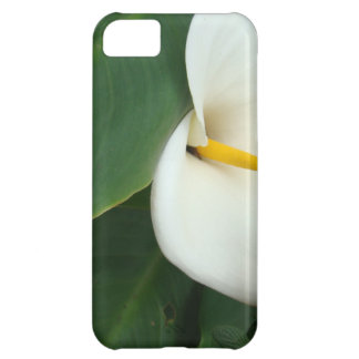 Calla Lily and Little Orange Flower iPhone 5C Case