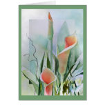 Calla Lily Blank Notecards Greeting Cards