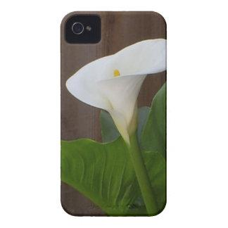 Calla Lily Case-Mate iPhone 4 Case