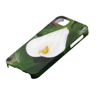 Calla Lily iPhone5 Cover iPhone 5 Cover