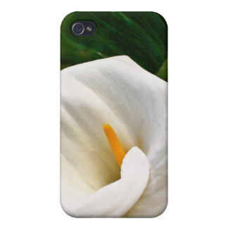 Calla Lily iPhone 4/4S Cover