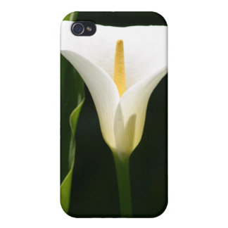 Calla Lily Covers For iPhone 4