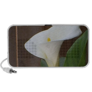 Calla Lily iPod Speakers