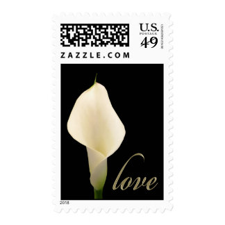 Calla lily Love Postage Stamps