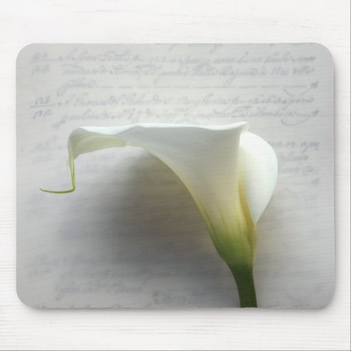 calla lily on old script handwriting mousepad