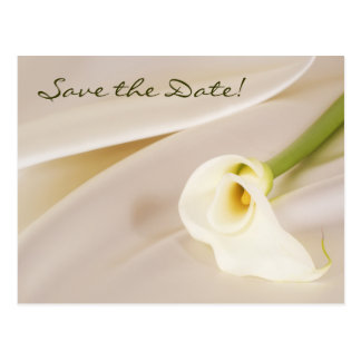 Calla Lily On White Satin, Save the Date! Postcard