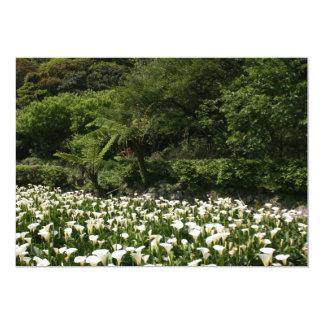 Calla Lily Plantation, Taiwan Card