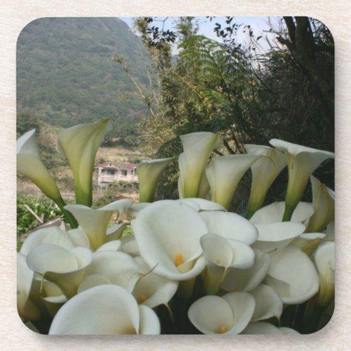 Calla Lily Plantation, Taiwan Coaster