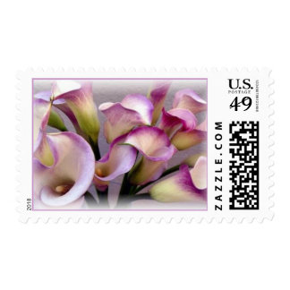 Calla Lily Purple Postage I