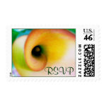 Calla Lily RSVP postage stamp