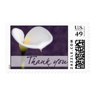 Calla Lily • Thank You Postage Stamps