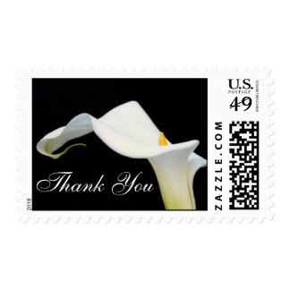 Calla Lily Thank You Postage Stamp