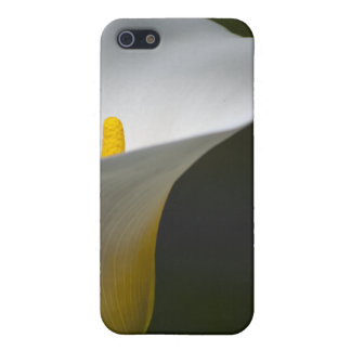 Callalily iPhone 5 Cover